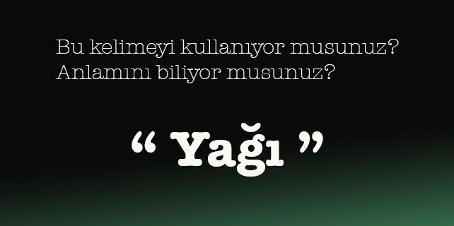 türkçe kelimeler