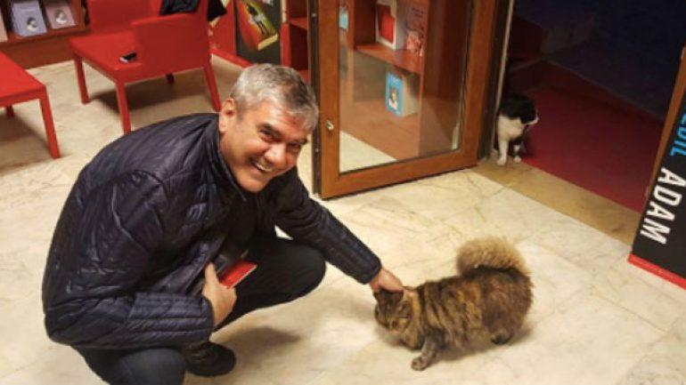 Kırmızı Kedi'nin kedisi çok sevimli