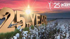 Adana Altın Koza Film Festivali heyecanı
