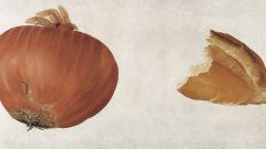 Evrenin Teni sergisinde soğan ekmek