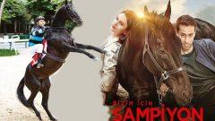 Şampiyon filminde rol alan atın sırrı