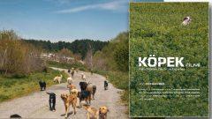 Köpek Filmi ilk gösterimi İstanbul Film Festivali'nde