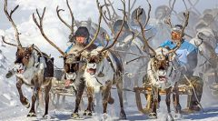 Sibirya'dan Sevgilerle fotoğraf sergisi
