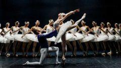 Kuğu Gölü Balesi TİM Show Center'da