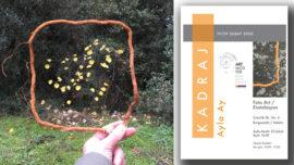 Ayla Ay'ın Kadraj sergisi Burgazada Artmosfer'de